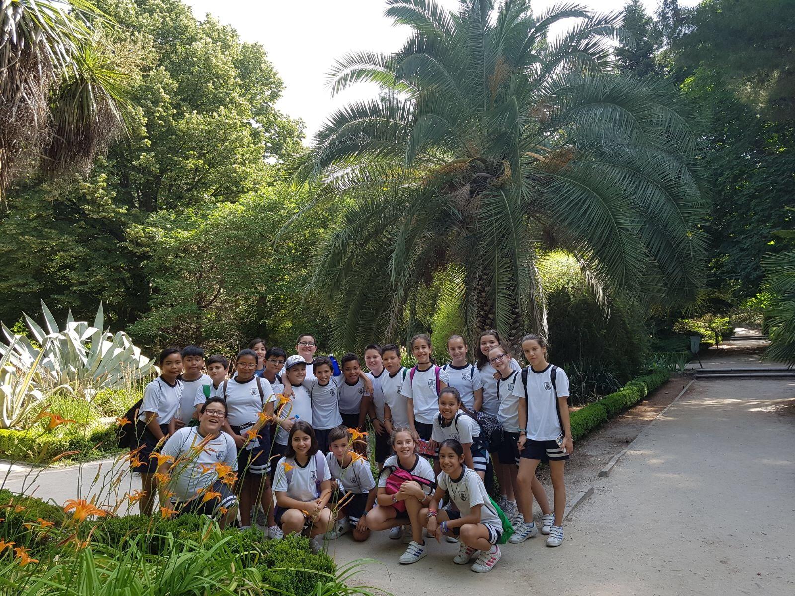 Visita al Real Jard n Bot nico 5 Primaria Colegio Cristo Rey